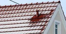 Dachpflege