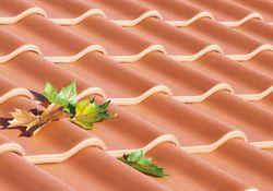 Dachsteine und Tondachziegel