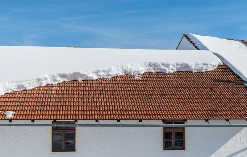 Dachkonstruktion: Dachlawine hinter Gittern